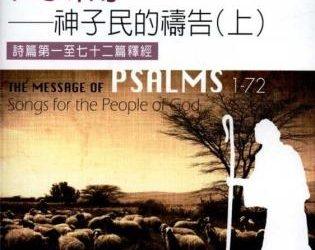 聖經資訊系列 詩篇(上)